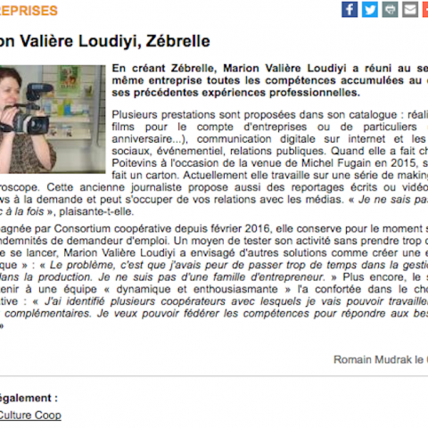 article-agence-zebrelle-7-a-poitiers-09-2016
